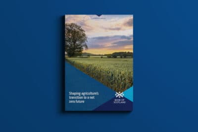 Promar & Bank of Scotland Branding